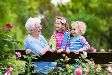 grand kids: Happy senior lady playing with little boy and girl in blooming rose garden. Grandmother with grand children sitting on a bench in summer park with beautiful flowers. Kids gardening with grandparent. Stock Photo