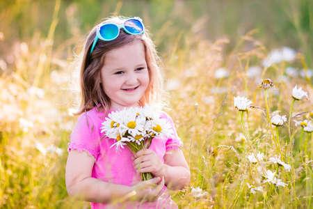 bouquet fleur: Enfant cueillant des fleurs de marguerite sauvages dans le champ. Les enfants jouent dans une prairie et de choisir un bouquet de fleurs le jour de l'été. fille en plein air au printemps enfant.