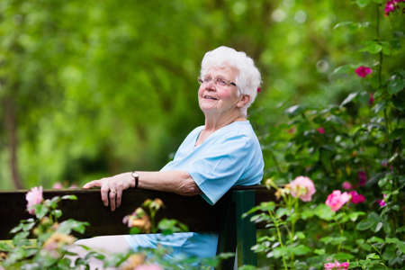 Happy senior lady sitting on wooden bench blooming rose garden. Grandmother picking fresh flowers. Retired elderly woman gardening on sunny summer day. Active retirement and health care concept. Stock Photo