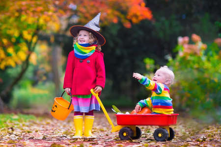 treating: Little girl in witch costume and baby boy in wheel barrow holding a pumpkin playing in autumn park. Kids at Halloween trick or treat. Toddler with jack-o-lantern. Children with candy bucket in forest.
