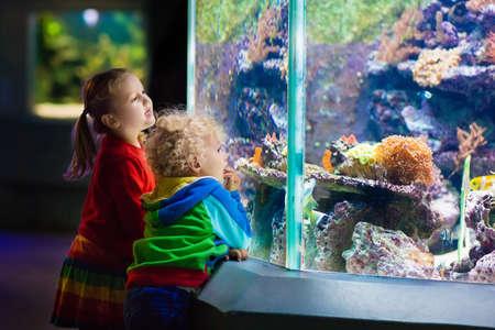 Weinig jongen en meisje kijken naar tropische koraalvissen in grote zeeleven tank. Jonge geitjes in de dierentuin aquarium.