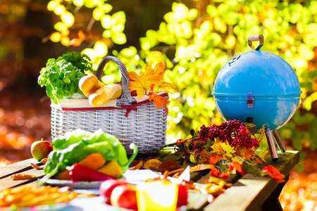 Table set for lunch outdoors in beautiful sunny autumn park. Charcoal grill and picnic basket with baguette bread, sandwich, fruit and vegetables. Cooking for bbq and grill party in fall. Stock Photo