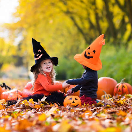 Children wearing black and orange witch costumes with hats playing with pumpkin and spider in autumn Park on Halloween. Kids trick or treat. Boy and girl carving pumpkins.