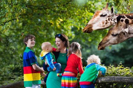 Moeder en kinderen, school student, kleine peuter jongen, preschool meisje en baby kijken en het voeden van dieren giraffe in de dierentuin. Wildlife ervaring voor ouders en kinderen op dierlijke safaripark.