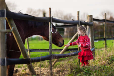 Family on a farm in autumn. Kids feed a horse. Outdoor fun children. Little girl playing with pets. Child feeding animal on a ranch on cold fall day. Banco de Imagens