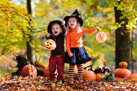 Kinderen dragen van zwarte en oranje heks kostuums met hoeden spelen met pompoen en spin in het najaar Park op Halloween. Kids trick or treat. Jongen en meisje snijden pompoenen. Stockfoto