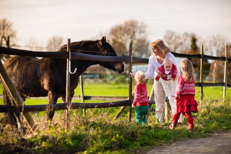Family On A Farm In Autumn Mother And Kids Feed A Horse Outdoor - Mother takes amazing pictures ever children animals farm