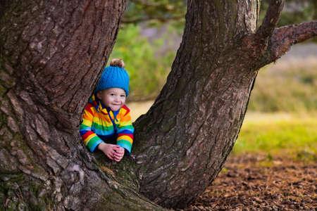 hermanos jugando: Niño pequeño que oculta detrás de árbol grande. niños felices jugando en el hermoso parque del otoño en día soleado de otoño frío. Los niños con chaquetas calientes juegan con hojas de oro.