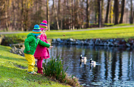 Little girl and boy feeding ducks and geese in park river on cold autumn day. Kids taking care of animals. Outdoor fun for children in fall or winter. Family day trip to birds zoo.