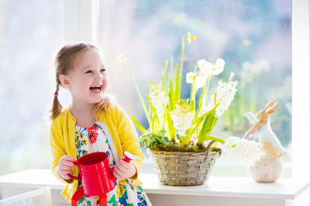 Cute girl watering first spring flowers. Easter home interior and decoration. Child taking care of plants. Kid with water can. Toddler with toy bunny. Little gardener with hyacinths and daffodils. Stock Photo