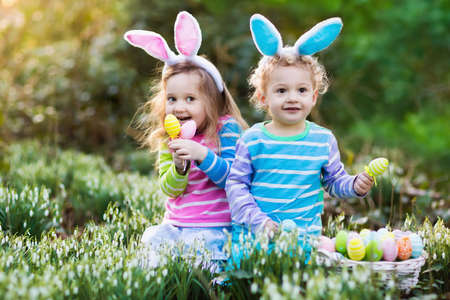 egg hunt: Kids on Easter egg hunt in blooming spring garden. Children with bunny ears searching for colorful eggs in snow drop flower meadow. Toddler boy and preschooler girl in rabbit costume play outdoors.