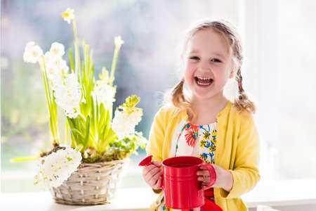 Cute girl watering first spring flowers. Easter home interior and decoration. Child taking care of plants. Kid with water can. Toddler with flower basket. Little gardener with hyacinths and daffodils.