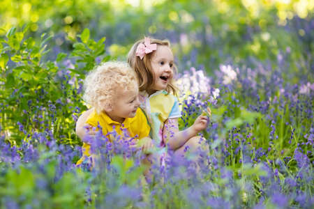 Kids gardening. Children play outdoors in bluebells meadow. Little girl and boy, brother and sister, work in the garden, planting bluebell flowers, watering blue bell flower bed. Family fun in summer.