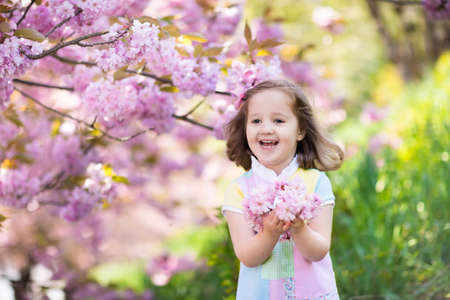 Little happy girl playing under blooming cherry tree with pink flowers. Child holding sakura blossom. Summer fun for family with kids outdoors in a beautiful spring garden. Kid with flower on Easter. Reklamní fotografie