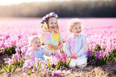 Three children playing in beautiful hyacinth flower field. Little girl, toddler boy and baby play in sunny summer garden with purple flowers. Kids having fun outdoors. Brothers and sister together.
