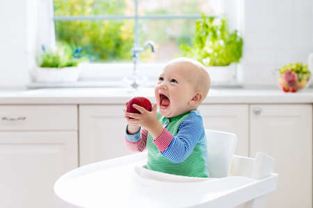 Baby eating fruit. Little boy biting apple sitting in white high chair in sunny kitchen with window and sink. Healthy nutrition for kids. Solid food for infant. Snack or breakfast for young child.