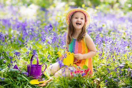 Kid in bluebell woodland. Child with flowers, garden tools and wheelbarrow. Girl gardening. Children play outdoor in bluebells, work, plant and water blue bell flower bed. Family fun in summer forest. Stock Photo - 78033026