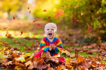 Kids play in autumn park. Children throwing yellow and red leaves.Baby with oak and maple leaf. Fall foliage. Family outdoor fun in autumn. Toddler kid or preschooler child in fall. Stock Photo