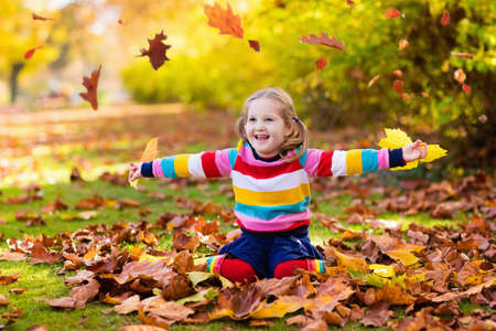 Kids play in autumn park. Children throwing yellow and red leaves. Little girl with oak and maple leaf. Fall foliage. Family outdoor fun in autumn. Toddler kid or preschooler child in fall. Stok Fotoğraf
