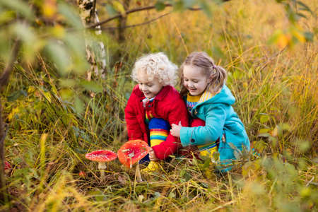 Happy laughing kids play in beautiful sunny autumn park. Little boy and girl watching toadstool mushroom in fall forest. Children hiking and playing outdoors. Preschooler learning toxic mushrooms. Imagens