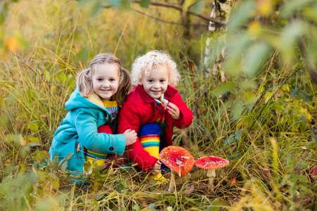 幸せな笑いの子供たちは、美しい日当たりの良い秋の公園で遊ぶ。男の子と女の子の毒キノコ キノコを見て秋の森。ハイキングや野外で遊ぶ子供た