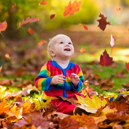 Kinderen spelen in de herfstpark. Kinderen gooien gele en rode bladeren. Baby met eik en esdoornblad. Herfstbladeren. Gezin buitenshuis plezier in de herfst. Peuter kind of kleuterschool in de herfst. Stockfoto