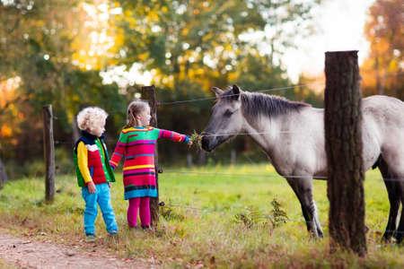 Familie auf einem Bauernhof im Herbst. Kinder speisen ein Pferd. Outdoor-Spaß Kinder. Kleinkind-Jungen und Mädchen spielen mit Haustieren. Child Fütterung Tier auf einer Ranch an kalten Herbsttag.