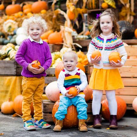 カボチャパッチで収穫祭のお祝いを楽しむ小さな子供たちのグループ。子供たちは暖かい秋の日にカントリーファームでカボチャを拾い、彫刻しま