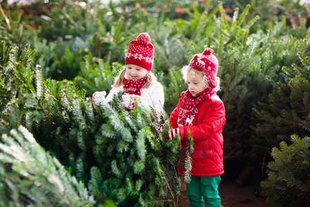 Familie kerstboom selecteren. Kinderen kiezen vers gesneden Noorse kerstboom op buiten veel. Kinderen die giften kopen bij de wintermarkt. Jongen en meisje die voor Kerstmisdecoratie winkelen bij markt. Vakantietijd