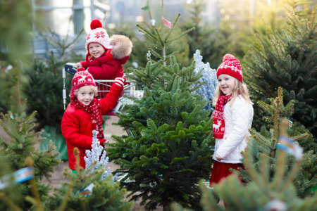 Familia seleccionando el árbol de Navidad. Niños escogiendo recién cortado árbol de Navidad de Noruega en el terreno al aire libre. Niños comprando regalos en la feria de invierno. Muchacho y muchacha que hace compras para la decoración de la Navidad en el mercado. Vacaciones