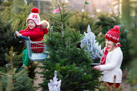 Familia seleccionando el árbol de Navidad. Niños escogiendo recién cortado árbol de Navidad de Noruega en el terreno al aire libre. Niños comprando regalos en la feria de invierno. Muchacho y muchacha que hace compras para la decoración de la Navidad en el mercado. Vacaciones Foto de archivo