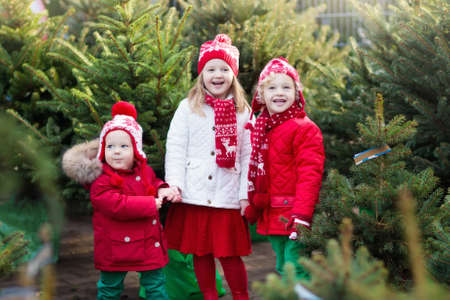 Family selecting Christmas tree. Kids choosing freshly cut Norway Xmas tree at outdoor lot. Children buying gifts at winter fair. Boy and girl shopping for Christmas decoration at market. Holiday time Reklamní fotografie