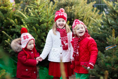 Family selecting Christmas tree. Kids choosing freshly cut Norway Xmas tree at outdoor lot. Children buying gifts at winter fair. Boy and girl shopping for Christmas decoration at market. Holiday time 스톡 콘텐츠