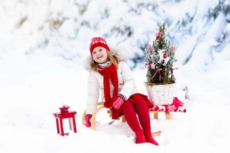 Children with Christmas tree on wooden sled in snow. Kids cut Xmas tree. Little girl on sledge in snowy forest. Family selecting winter holidays decoration. Child with sleigh. Kid sledding.