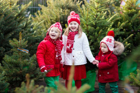 buying time: Family selecting Christmas tree. Kids choosing freshly cut Norway Xmas tree at outdoor lot. Children buying gifts at winter fair. Boy and girl shopping for Christmas decoration at market. Holiday time Stock Photo