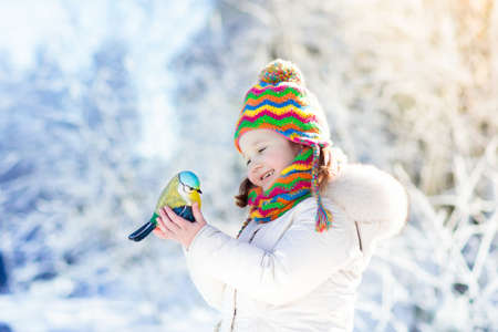 Child feeding tit bird in winter park. Kids feed birds in snowy forest. Little girl with titmouse. Kids watch wild animals. Family Christmas vacation. Children play in snow. Outdoor and wildlife fun.
