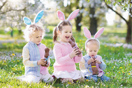 Kids with bunny ears on Easter egg hunt in blooming cherry blossom garden. Little boy and girl eat chocolate rabbit. Spring flowers and eggs basket in fruit orchard. Children with candy and sweets. Stock Photo