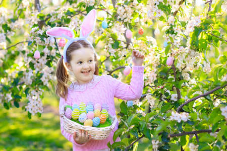 Child on Easter egg hunt in blooming cherry tree garden with spring flowers. Kid with colored eggs in basket. Little girl with bunny ears. Easter decoration, family celebration, Christian traditions.