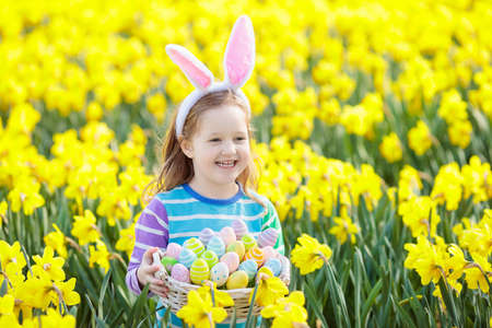 Easter egg hunt in spring garden. Kids searching for colorful eggs and sweets hidden in blooming flower field. Child with bunny ears and egg basket. Family Easter celebration. Girl in daffodil garden Stock Photo