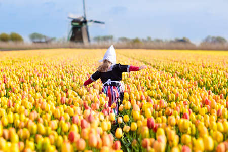 Child in tulip flower field with windmill in Holland. Little Dutch girl in traditional national costume, dress and hat, with flower basket. Kid in tulips fields in the Netherlands at wind mill. Stock Photo