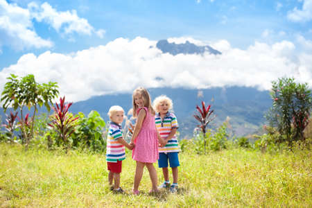 Child hiking in mountains. Kids trekking in Borneo jungle. Little girl  and boy looking at Mount Kinabalu peak, highest mountain of Malaysia. Family summer vacation in Southeast Asia.