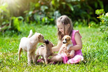 子供たちはかわいい子犬と遊びます。日当たりの良い夏の庭で遊ぶ子供や赤ちゃん犬。子犬を抱く小さな女の子。ペットの犬を持つ子供。公園の芝生の上の家族やペット。子供と動物の友情。 写真素材 - 101296321