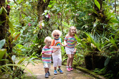 Family hiking in jungle. Kids on a hike in tropical rainforest. Young children walk in exotic forest. Travel with child. Borneo jungle and mountains. Boy and girl explore nature in Asia.