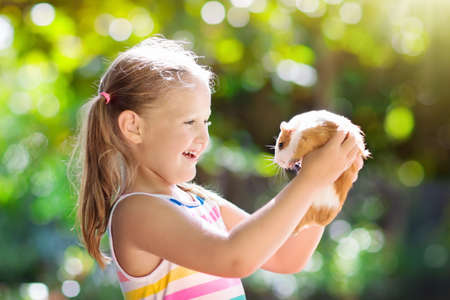 Child playing with guinea pig. Kids feed cavy animals. Little girl holding and feeding domestic animal. Children take care of pets. Preschooler kid petting hamster. Pet rodents. Trip to zoo or farm.