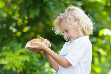 Child playing with white rabbit. Little boy feeding and petting white bunny. Easter celebration. Egg hunt with kid and pet animal. Children and animals. Kids take care of pets. Spring Easter garden. Foto de archivo