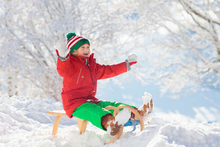 Little boy enjoying a sleigh ride. Child sledding. Toddler kid riding a sledge. Children play outdoors in snow. Kids sled in the Alps mountains in winter. Outdoor fun for family Christmas vacation.