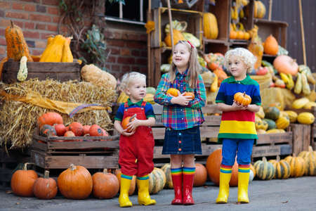 Group of little children enjoying harvest festival celebration at pumpkin patch. Kids picking and carving pumpkins at country farm on warm autumn day. Halloween and Thanksgiving time fun for family. Фото со стока