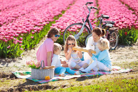 Family picnic at tulip flowers fields in Holland. Young mother and children eating lunch in blooming tulips flower field. Mom and kids travel by bike. Bicycle trip in the Netherlands. Spring vacation.