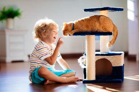 Niño jugando con gato en casa. Niños y mascotas. Niño alimentando y acariciando lindo gato color jengibre. Árbol de gatos y rascador en el interior de la sala de estar. Los niños juegan y alimentan al gatito. Animales domésticos.