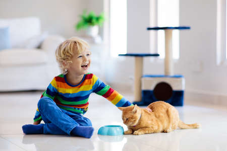 Child playing with cat at home. Kids and pets. Little boy feeding and petting cute ginger color cat. Cats tree and scratcher in living room interior. Children play and feed kitten. Home animals. Stock Photo - 118773791